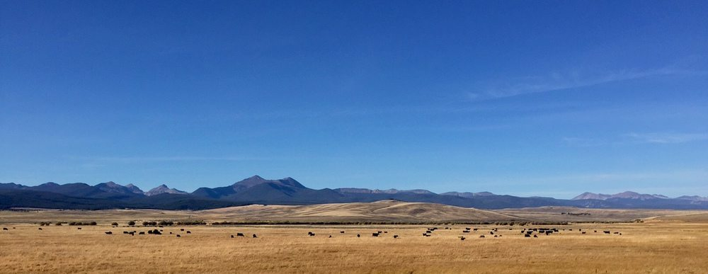 Southwestern Montana